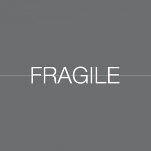 FRAGILE Catalog Launch and AGM 2019