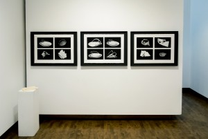 03_Laura Demers_Living Fossils_installation